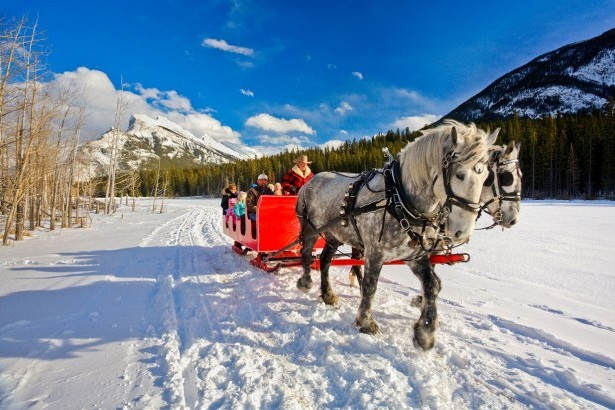 Horse drawn carriage in Banff
