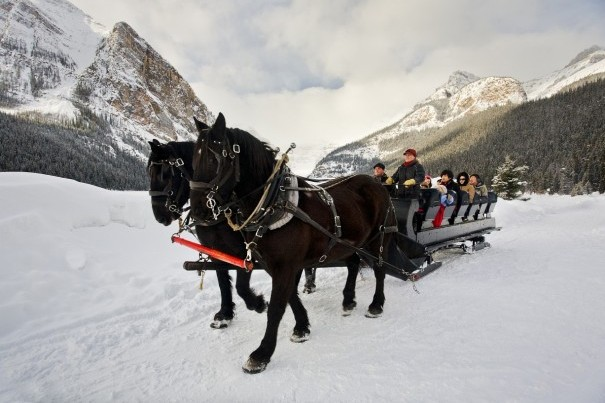 Horse drawn carriage and mountain backdrop in Lake Louise