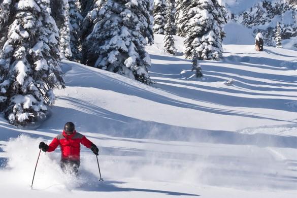 A solo skier on piste in Fernie