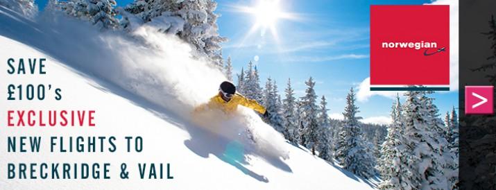North America Ski Chalet Deals