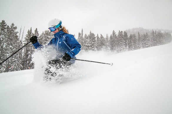 Panorama Canada ski backcountry powder