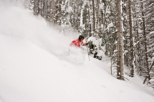 Skiing deep powder in the heart of the forest