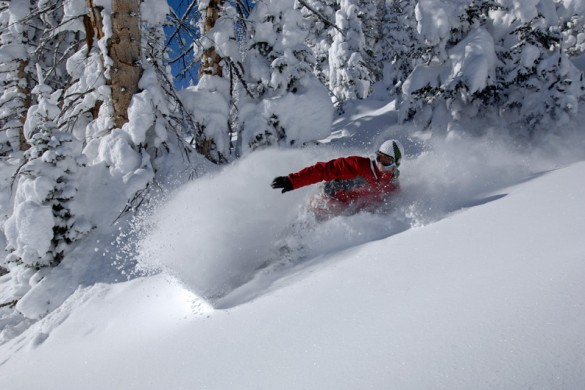 A snowboarder enjoys deep powder in Steamboat resort