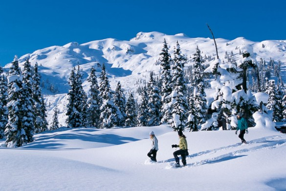 Trekking through fresh snow under blue skies in Whistler, Canada