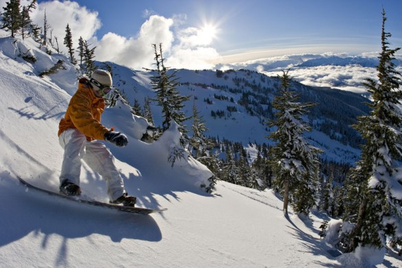 A snowboarder rides through the trees in Whistler