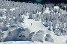 Skier surrounded by frozen trees in Big White