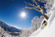 Hakuba Cortina Japan Back Country Ski