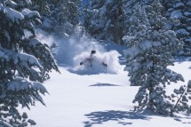 A skier enjoying deep powder in Mammoth ski resort
